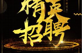 金色粒子飘落特效精英招聘广告宣传海报模板