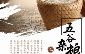 经典五谷杂粮之大米广告宣传海报模板