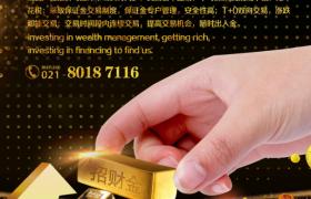 金色粒子炫麗金錢圖案投資理財宣傳海報模板
