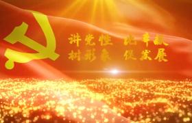 金光闪闪的粒子光线党政图文展示PR模板素材