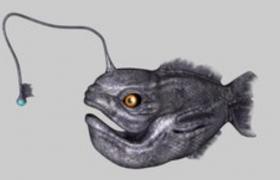 遠古海洋生物燈籠魚立體c4d模型