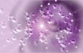 炫紫背景紫色小花旋转梦幻浪漫视频素材