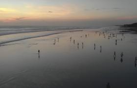海边人们嬉戏等待日出唯美实拍视频素材参考