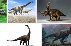 C4D灭绝物种:多款恐三维模型工程下载