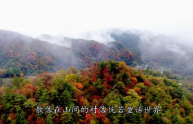 二十四节气之立冬节气农村必要准备及乡土人情讲解视频