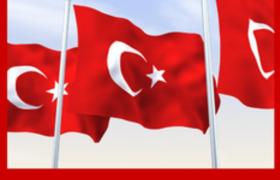 红色图标logo演绎出随风飘扬的旗帜海报模型