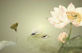 復古文藝風中國水墨荷花池塘動畫特效視頻素材