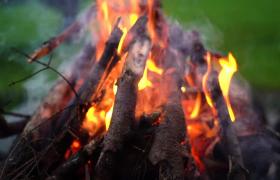 高清实拍野外燃烧的火堆篝火视频素材