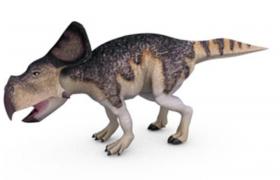 侏羅紀公園電影白堊紀野牛龍幼崽c4d模型展示(含貼圖)