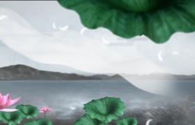 起伏的山脉下清澈平静的河面边盛开的莲花古风视频素材下载