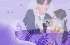 浪漫紫色动画背景图文演绎结婚恋爱电子相册会声会影视频