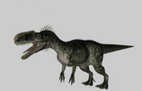 白垩纪晚期兽角类单龙超科恐龙:单脊龙C4D模型