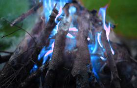 唯美罕见火堆燃烧出蓝色火焰高清实拍视频素材
