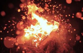 俯拍篝火火焰旺盛火星迸溅视频素材参考