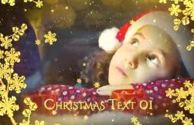 唯美雪花粒子枝头里圣诞节家庭版展示温馨图片画面AE模板