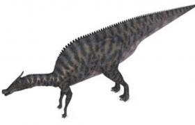 C4D恐龙模型:鸭嘴龙类古代群居生物栉龙模型预览