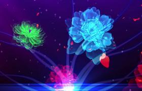 玫瑰花瓣漂浮光感七彩鲜花绽放唯美特效视频素材下载