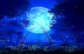 一轮圆月下夜间花朵生长绽放高清舞台生命律动背景视频素材