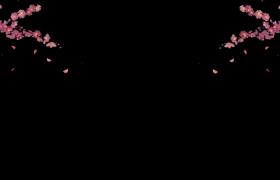 花枝风中摇曳花瓣稀零飘落后期特效视频素材下载