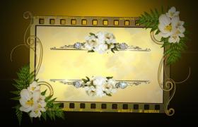 复古经典淡黄色胶卷之创意设计婚礼婚庆图文展示PR模板