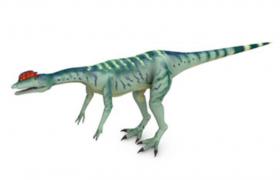 卡通动画和谐版C4D小型肉食恐龙双冠龙模型(含贴图)