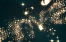 金幣粒子效果飛馳徽標形狀拼合動態logo揭示視頻AE模板