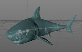 C4D動物工程預設:海洋中的肉食霸主大白鯊模型展示(可控關節)