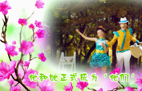 美丽花朵盛开图文并茂展示婚庆婚礼edius模板