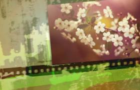 復古文藝潑墨色彩圖片墻平移展示edius7.42電子相冊模板