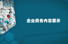 蜂窝网格效果企业商务图文演示edius6.54模板