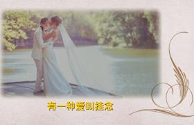花纹生长背景创意翻页动态展示爱情婚礼edius6.54模板