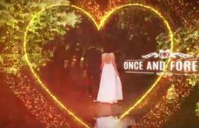 梦幻高端仪式婚礼甜蜜相册爱心粒子特效aep格式AE模板下载