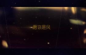 光影迷离幻动星点耀眼闪烁婚礼主题edius6.54模板
