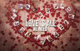 AE模板浪漫婚礼图片心形相册展示玫瑰花瓣扁平化Love