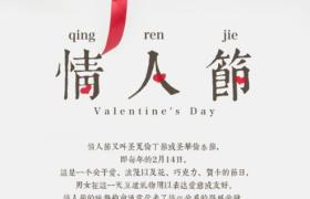纯白简约背景手递鲜花纯洁浪漫情人节促销海报
