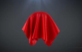 紅綢新娘蓋頭揭開明亮標志LOGO動畫AE模板