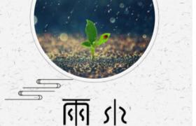 極簡古風背景嫩芽新生插圖傳統節氣雨水宣傳海報