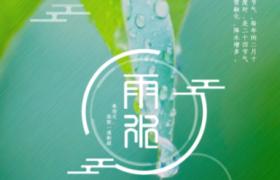 綠色模糊背景嫩葉雨珠布滿psd雨水節氣宣傳海報