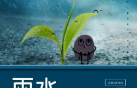 藍色主調色種子嫩芽趣味卡通配圖雨水節氣psd平面宣傳海報