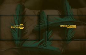 干净简约25款字幕标题动画手掌羽翼背景素材包AE模板