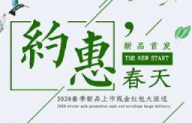 綠葉粉花INS簡約風設計約惠春天新品首發平面促銷宣傳海報
