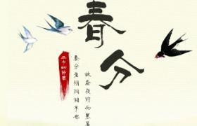 柳枝新燕古风水墨诗意春景图案传统春分节气PS宣传海报