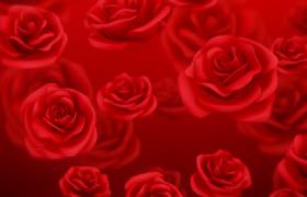 唯美紅色玫瑰浪漫飛舞舞臺演出溫馨告白背景視頻素材