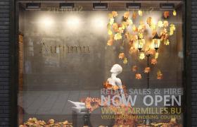 暖色系枫叶背景秋季AURUMN专属室内橱窗造型街景建筑C4D工程模型