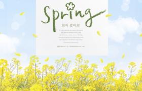 清新油菜花文藝插圖設計Spring春季宣傳海報