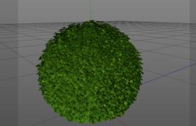 城市街區綠化帶造景設計球星buxus黃楊景觀植物C4D模型
