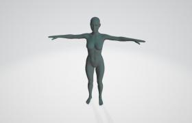 Female_tpose_obj女性人體藝術3D建模工程下載(含材質貼圖)