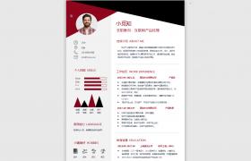 图文比例logo图标设计个性化互联网专业求职简历Word模板