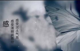 中国风水墨丹青墨迹蝴蝶振翅清明节文字动画缅怀展示AE模板