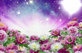 漂亮花海蝴蝶停歇炫彩粒子浪漫冲击LED舞台背景视频